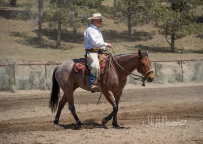 Mike in the Hackamore
